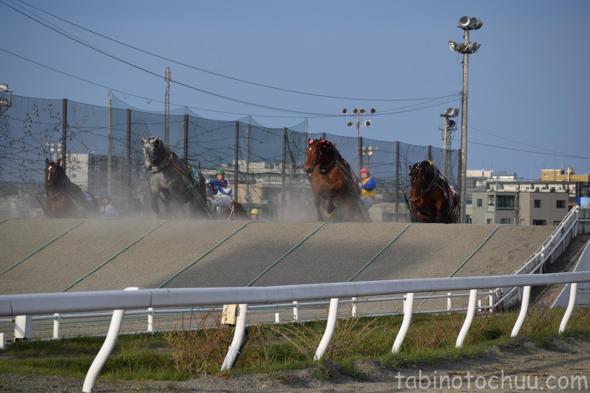 ばんえい競馬4