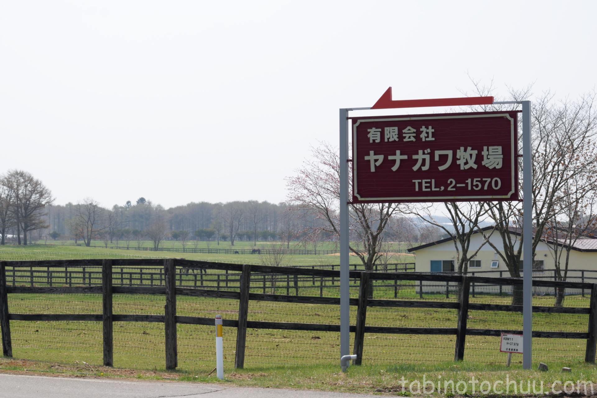 ヤナガワ牧場